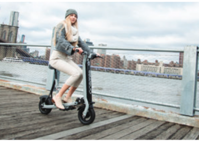 Overview: Micromobility (2019)